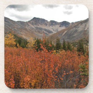 Fall Mountain Landscape Drink Coaster