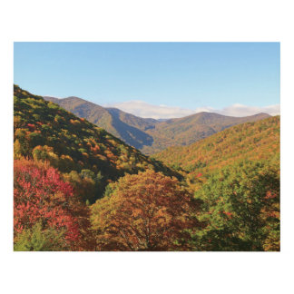 Fall Mountains Wood Wall Art