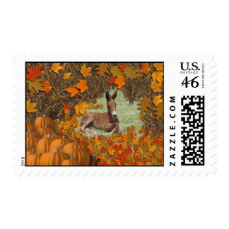 Fall Mule Stamps