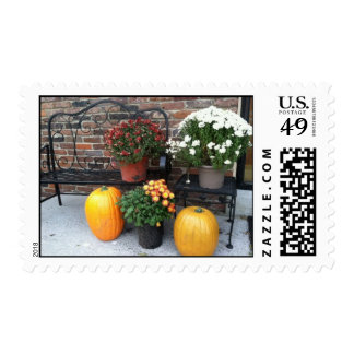 Fall mums and pumpkins on postage stamp