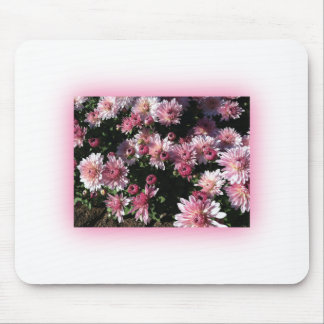 Fall Mums At Sunset Mouse Pad