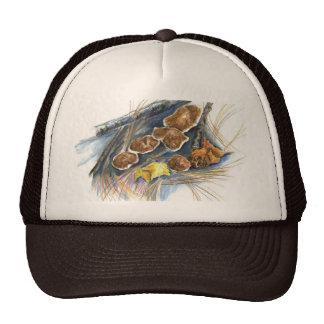 Fall Mushrooms - watercolor pencil Trucker Hat