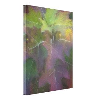 Fall Oak Leaf Hydrangea Canvas Print