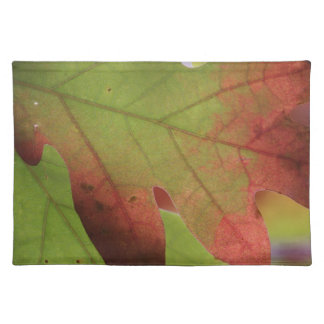 Fall Oak Leaves Placemat