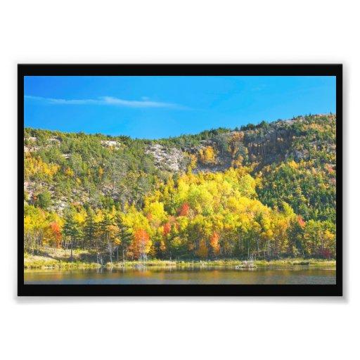 Fall On Beaver Dam Pond Acadia National Park Maine Photo Print