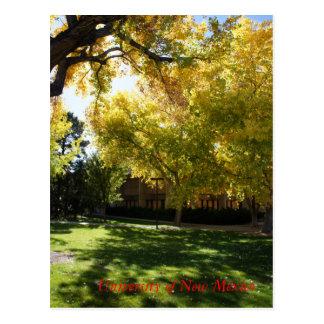 Fall on Campus I Postcard