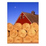 Fall on the Farm Postcard