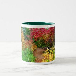 Fall Path Two-Tone Coffee Mug