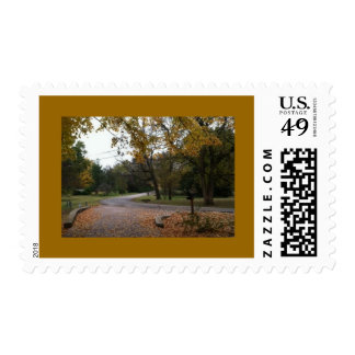 Fall photo on postage stamp