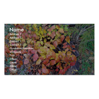 Fall poison ivy business card