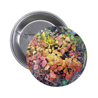 Fall poison ivy button