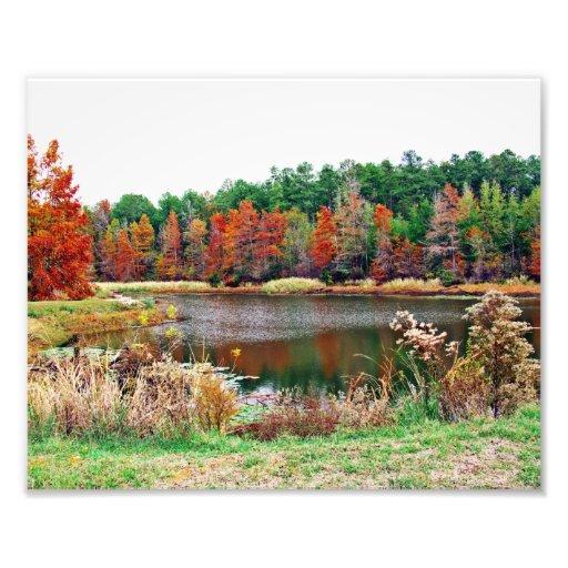 Fall pond Photo