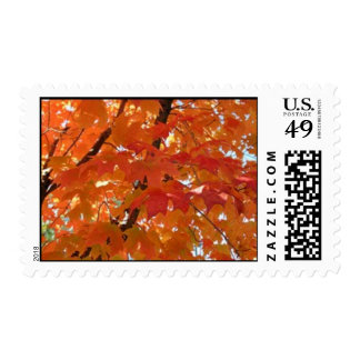Fall Postage Stamp