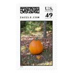 fall pumpkin postage