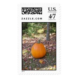 fall pumpkin stamp