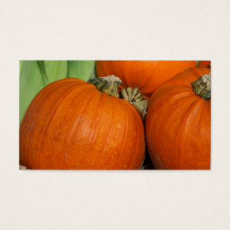 Fall Pumpkins and Maize Corn Business Card