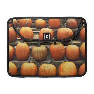 Fall pumpkins MacBook pro sleeve