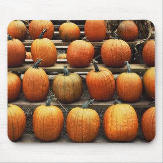 Fall pumpkins mouse pad