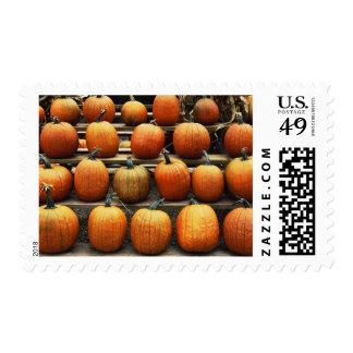 Fall pumpkins postage stamp