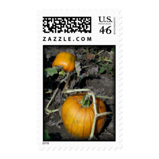 """""""Fall Pumpkins"""" - Unique Holiday Fall Theme Stamps"""