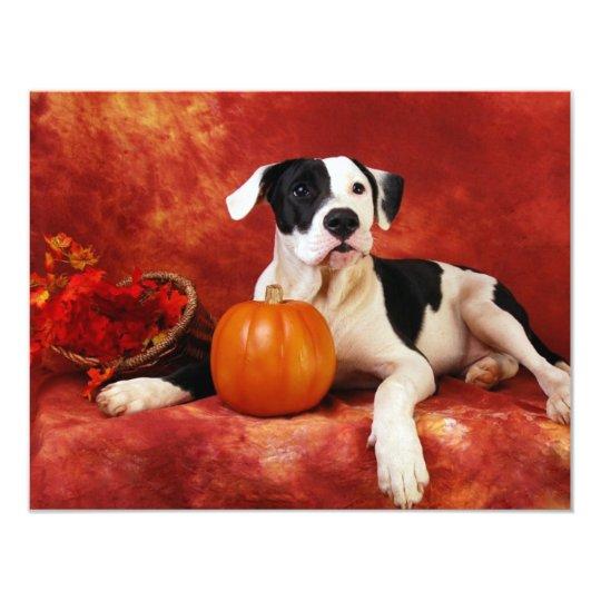 Fall puppy card