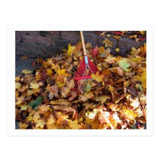 Fall - Raking the Leaf Harvest , Photograph Postcard
