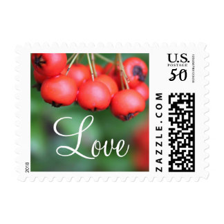 Fall red fruits wedding love  stamps. postage