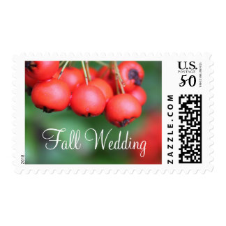 Fall red fruits wedding stamps. nature photography postage