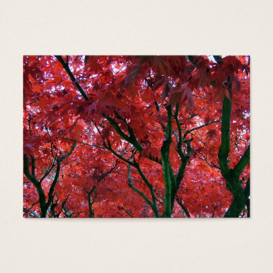 fall red maple leaves business card
