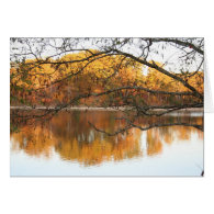 Fall Reflection Card