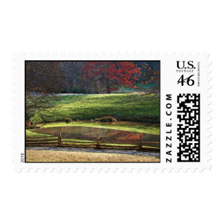Fall Reflections postage stamp