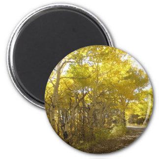 fall road magnet