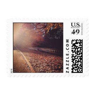 Fall Road Postage Stamp