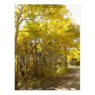 fall road postcard