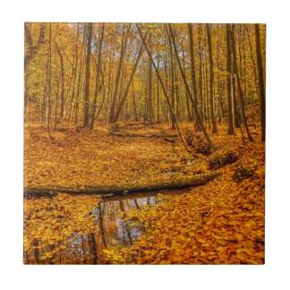 Fall Scene Ceramic Tile
