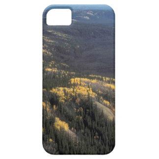 FALL SCENIC iPhone SE/5/5s CASE