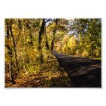 fall scenic photo print
