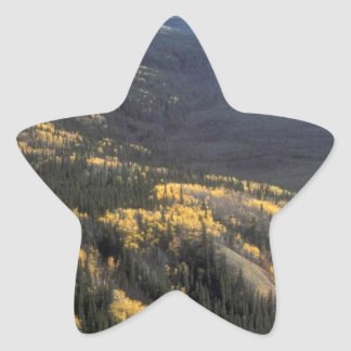 FALL SCENIC STAR STICKER