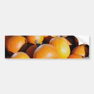 Fall Season Bumper Sticker