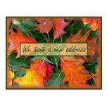 Fall Season Oak Leaves Moving Postcard