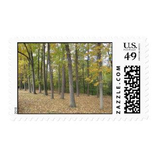 Fall Season Stamps