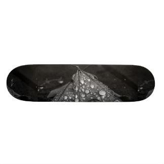 Fall Showers Skateboard Deck