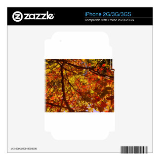 Fall Skins For iPhone 3GS