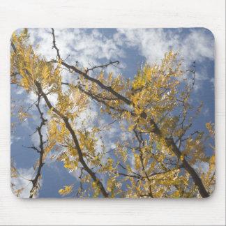 fall sky mouse mats