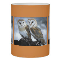 Fall Snuggles Owl candle