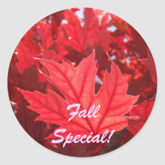 Fall Special! stickers Red Autumn Leaves Leaf
