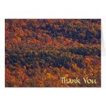 Fall Splendor Thank You Card