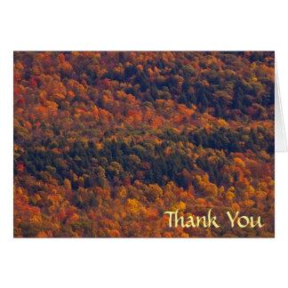 Fall Splendor Thank You Greeting Card