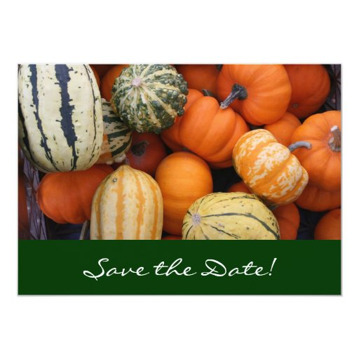 Fall Squash Harvest Save the Date Card