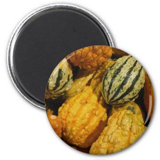 Fall Squash Magnet
